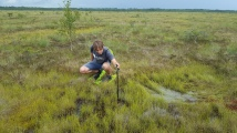 Measuring the depth of the swamp
