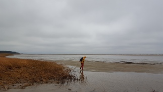 We were challenged by the little pools of water left where the sea should actually be.,