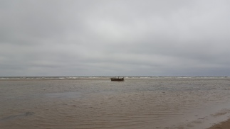 Sunken boat uncovered