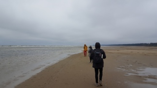 Exploring the new coast